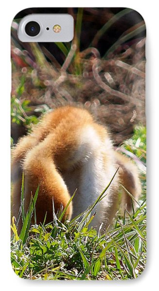 IPhone Case featuring the photograph Sandhill Chick 008 by Chris Mercer
