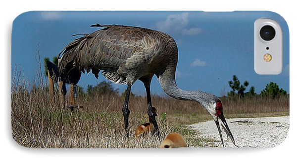 IPhone Case featuring the photograph Sandhill Crane 038 by Chris Mercer