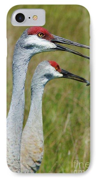Sandhill Crane Portraits W-grub IPhone Case by Lynda Dawson-Youngclaus