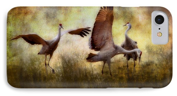 Sandhill Cranes  IPhone Case by Ellen Heaverlo