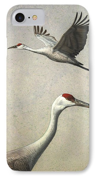 Sandhill Cranes IPhone Case by James W Johnson