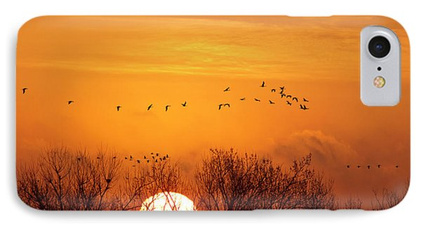 Sandhill Cranes Silhouetted Aginst IPhone Case by Chuck Haney