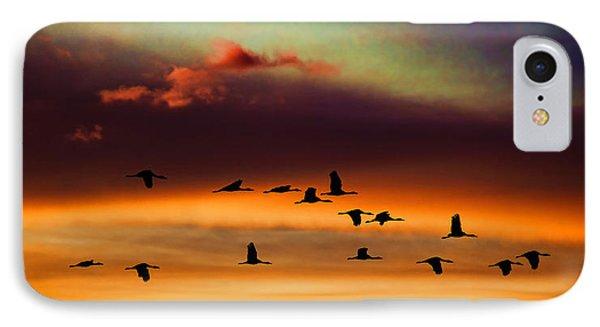 Sandhill Cranes Take The Sunset Flight IPhone Case
