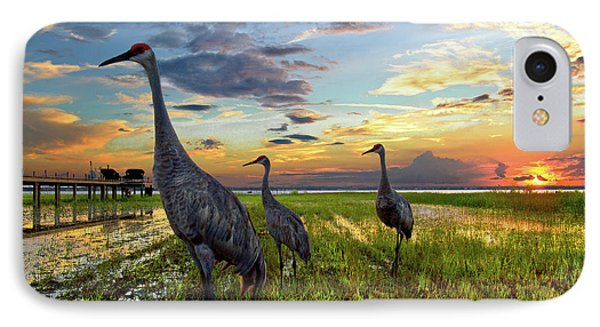 Sandhill Sunset IPhone 7 Case