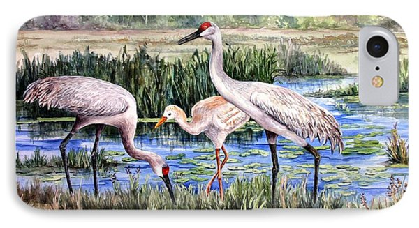 Sandhills By The Pond IPhone Case