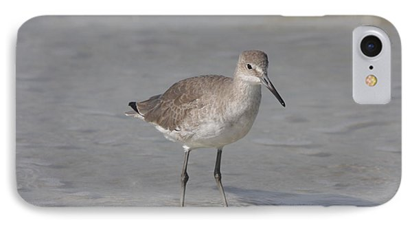 Sandpiper IPhone Case by Christiane Schulze Art And Photography