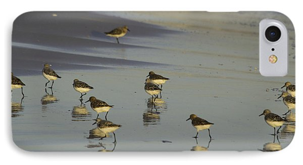 Sandpiper Sunset Reflection IPhone Case by Susan Molnar