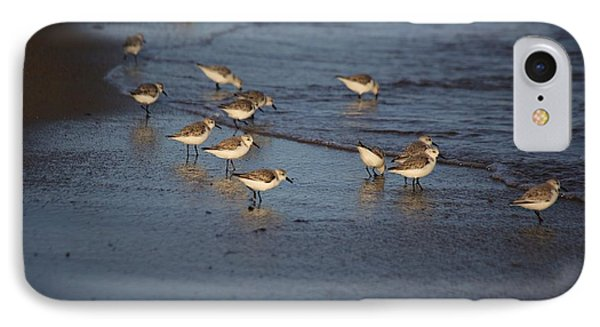 Sandpipers 5 IPhone Case by Allan Morrison