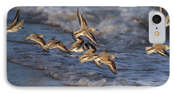 Sandpipers In Flight IPhone Case by Allan Morrison