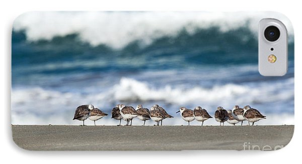 Sandpipers Keeping Warm On A Very Cold Day At The Beach IPhone Case by Michelle Wiarda