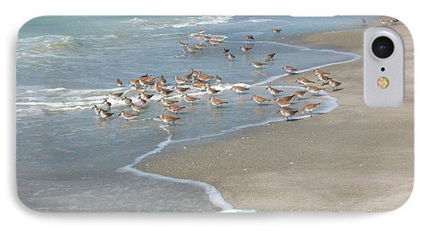 Sandpipers On The Beach IPhone Case
