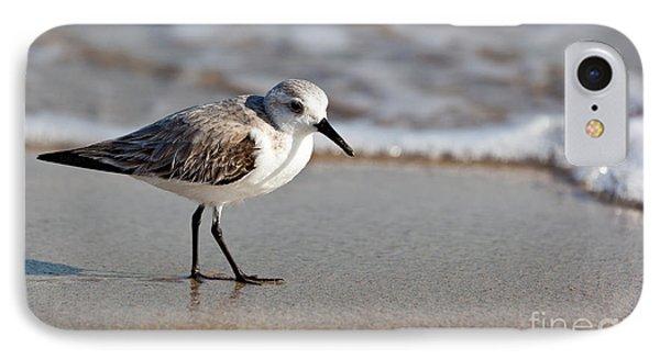 Sandpipers Secrets IPhone Case by Michelle Wiarda