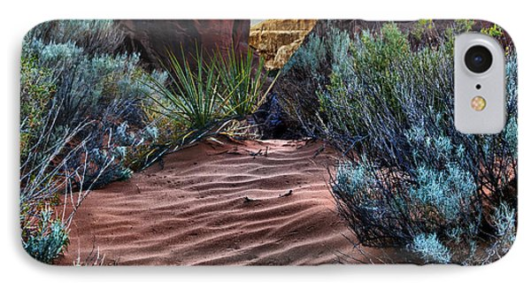 Sandy Trail Arches National Park IPhone Case by Gary Warnimont