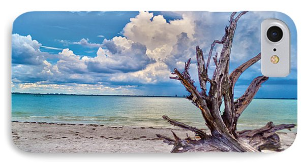 Sanibel Island Driftwood IPhone Case by Timothy Lowry