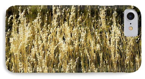 Santa Fe Grasses IPhone Case