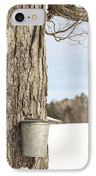 Sap Bucket On Maple Tree IPhone Case by Edward Fielding