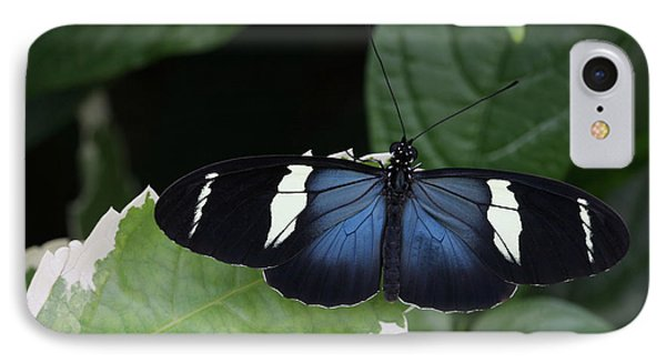 Sara Longwing Butterfly IPhone Case