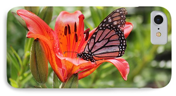 IPhone Case featuring the photograph Saskatchewan Prairie Lily And Butterfly by Ryan Crouse