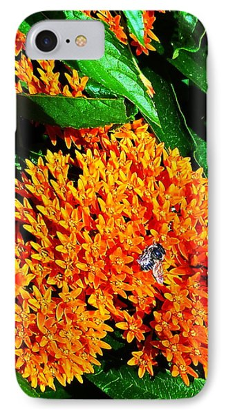 Save Our Bees IPhone Case