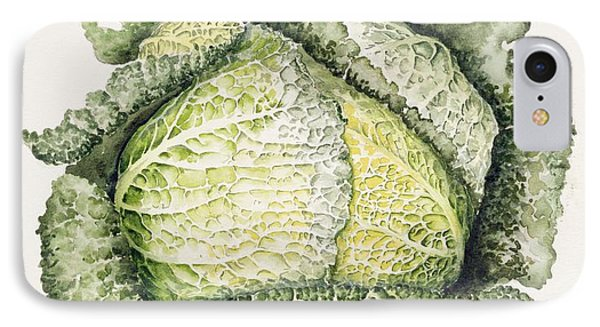 Savoy Cabbage  IPhone 7 Case by Alison Cooper