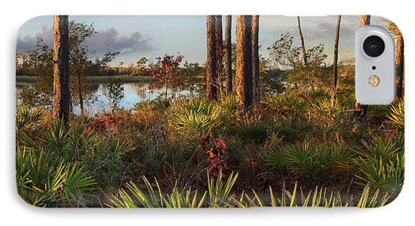 Saw Palmetto And Longleaf Pine IPhone Case by Tim Fitzharris