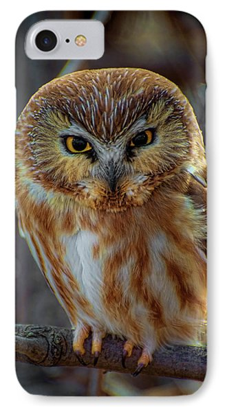 IPhone Case featuring the photograph Saw-whet Owl by Britt Runyon