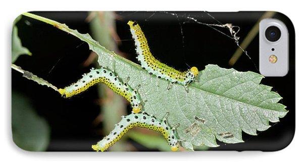 Sawfly Larvae On Rose Leaf IPhone Case by Bob Gibbons