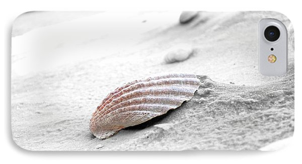 IPhone Case featuring the photograph Scallop Shell by Robert Meanor