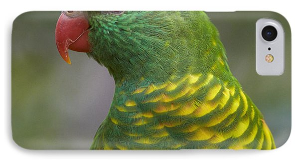Scaly-breasted Lorikeet Australia IPhone Case by Martin Willis