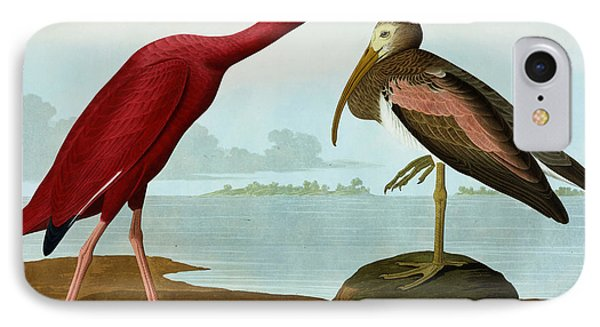 Scarlet Ibis IPhone 7 Case