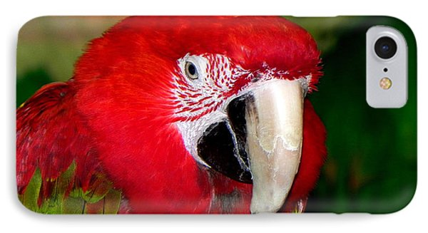 IPhone Case featuring the photograph Scarlet Macaw by Bill Swartwout