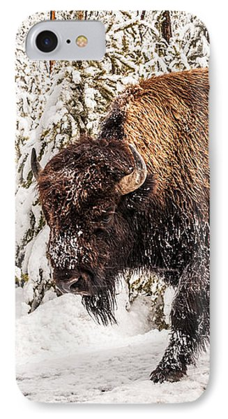 Scary Bison Phone Case by Sue Smith
