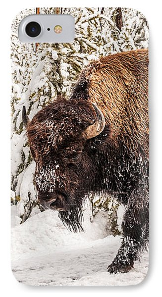 Scary Bison IPhone Case