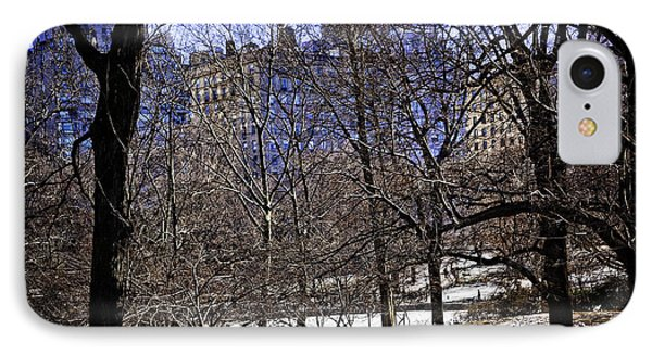 Scene From Central Park - Nyc Phone Case by Madeline Ellis