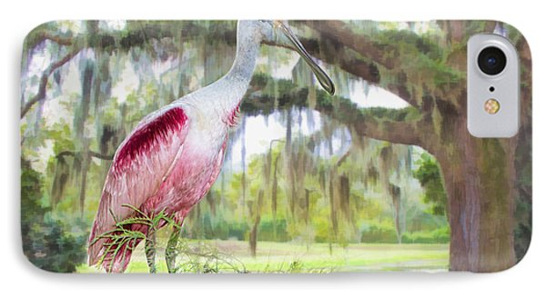 Scene From The Deep South IPhone Case
