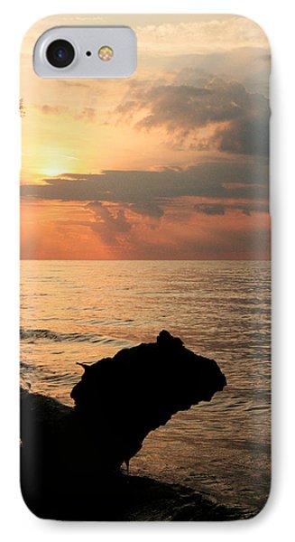 Scenic Beach Driftwood Sunset Phone Case by Heather Allen