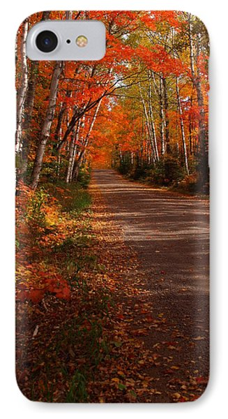 Scenic Maple Drive IPhone Case by James Peterson