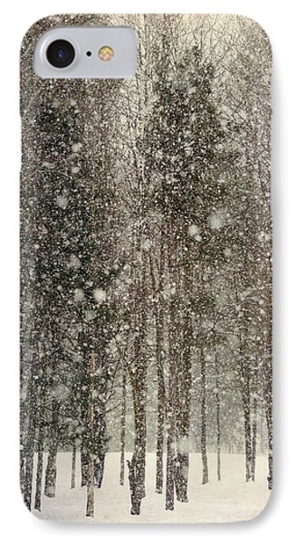 Scenic Snowfall Phone Case by Christina Rollo