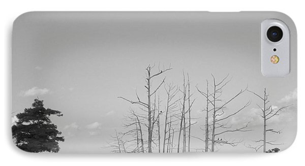 IPhone Case featuring the photograph Scenic Swamp Cypress Trees Black And White by Joseph Baril