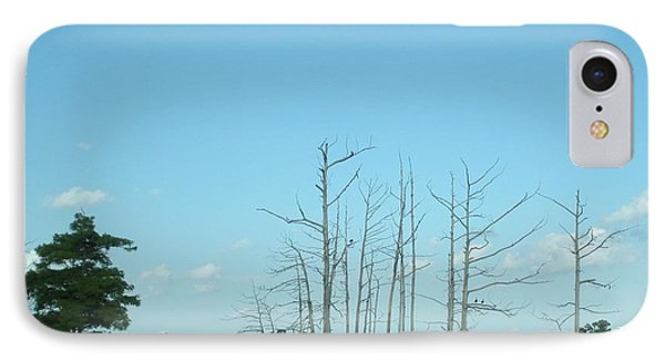 IPhone Case featuring the photograph Scenic Swamp Cypress Trees by Joseph Baril