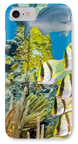 IPhone Case featuring the photograph School Gathering by Paula Porterfield-Izzo