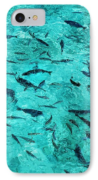 School Of Fishes In The Transparent Water Phone Case by Jenny Rainbow