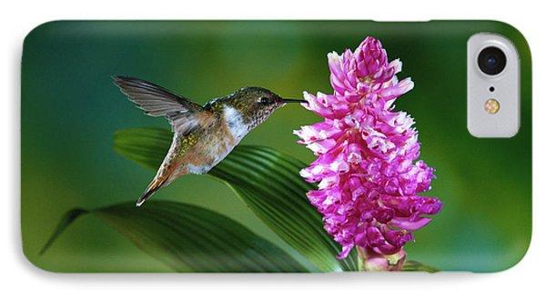 Scintillant Hummingbird Selasphorus Phone Case by Michael and Patricia Fogden