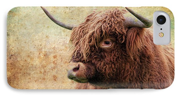 Scottish Highland Steer IPhone Case by Steve McKinzie