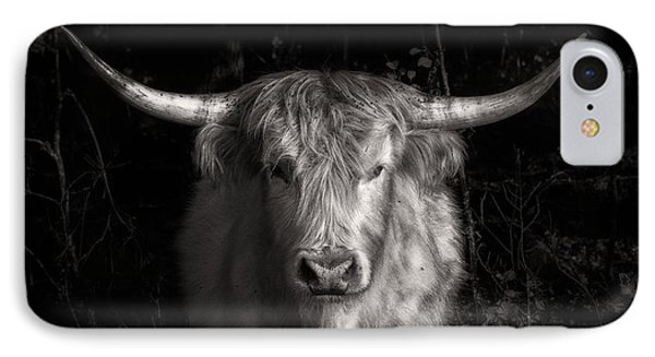 Scottish Highlander Bull IPhone Case by Robert FERD Frank