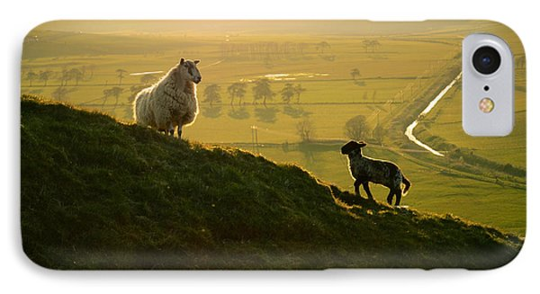 Scottish Sheep And Lamb IPhone Case by Mr Doomits