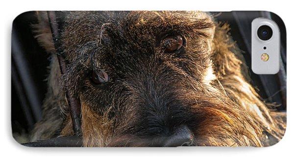 Scottish Terrier Closeup Phone Case by Jess Kraft