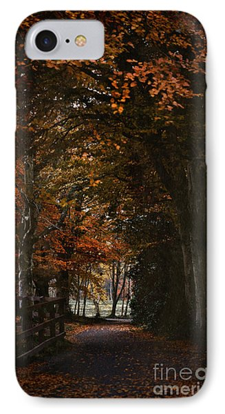 Scottish Woodland Walk IPhone Case