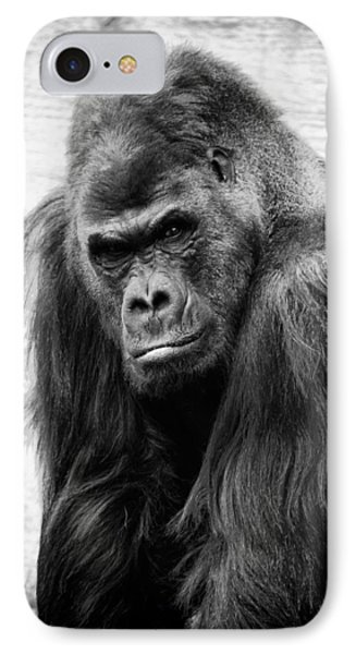 Scowling Gorilla IPhone Case by Goyo Ambrosio