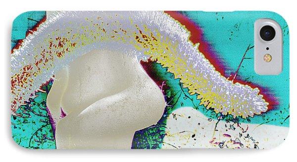 Sculpture Big Sur IPhone Case
